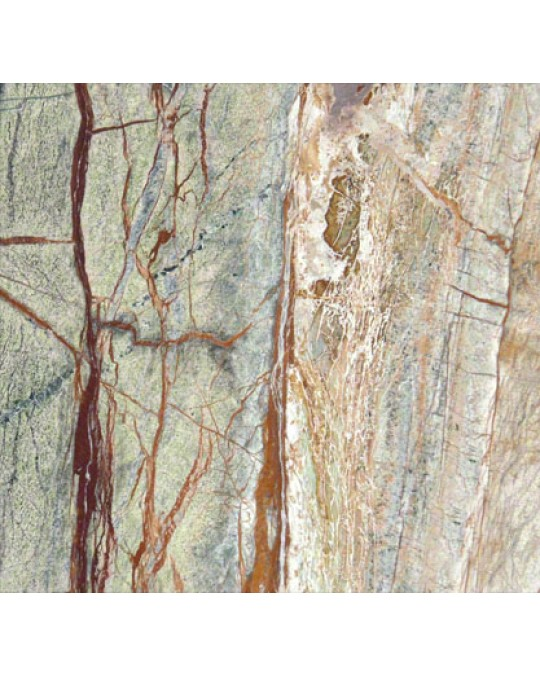M S International - Natural Stone Marble Rain Forest Polished 12 X 12 Marble