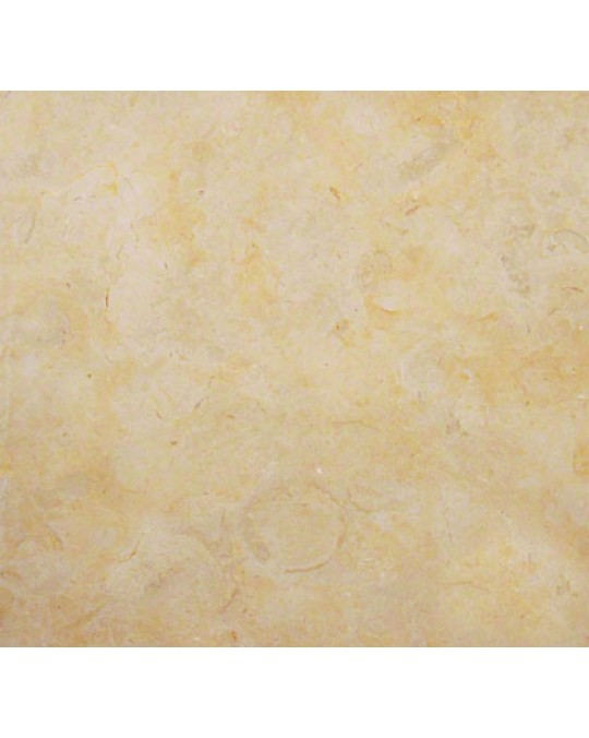 M S International - Natural Stone Limestone Ramon Gold Polished 18 X 18 Limestone