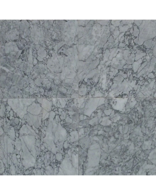 M S International - Natural Stone Marble Statuary Capri Polished Polished 12 X 24 Marble