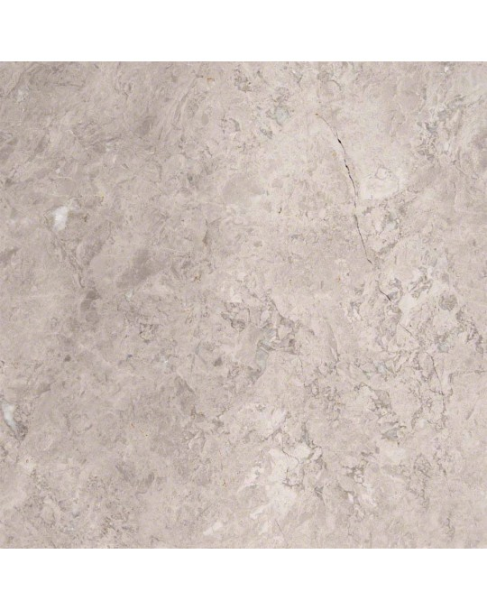 M S International - Natural Stone Marble Tundra Gray Polished 12 X 12 Marble